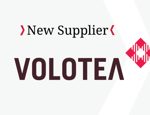 New connection with Volotea